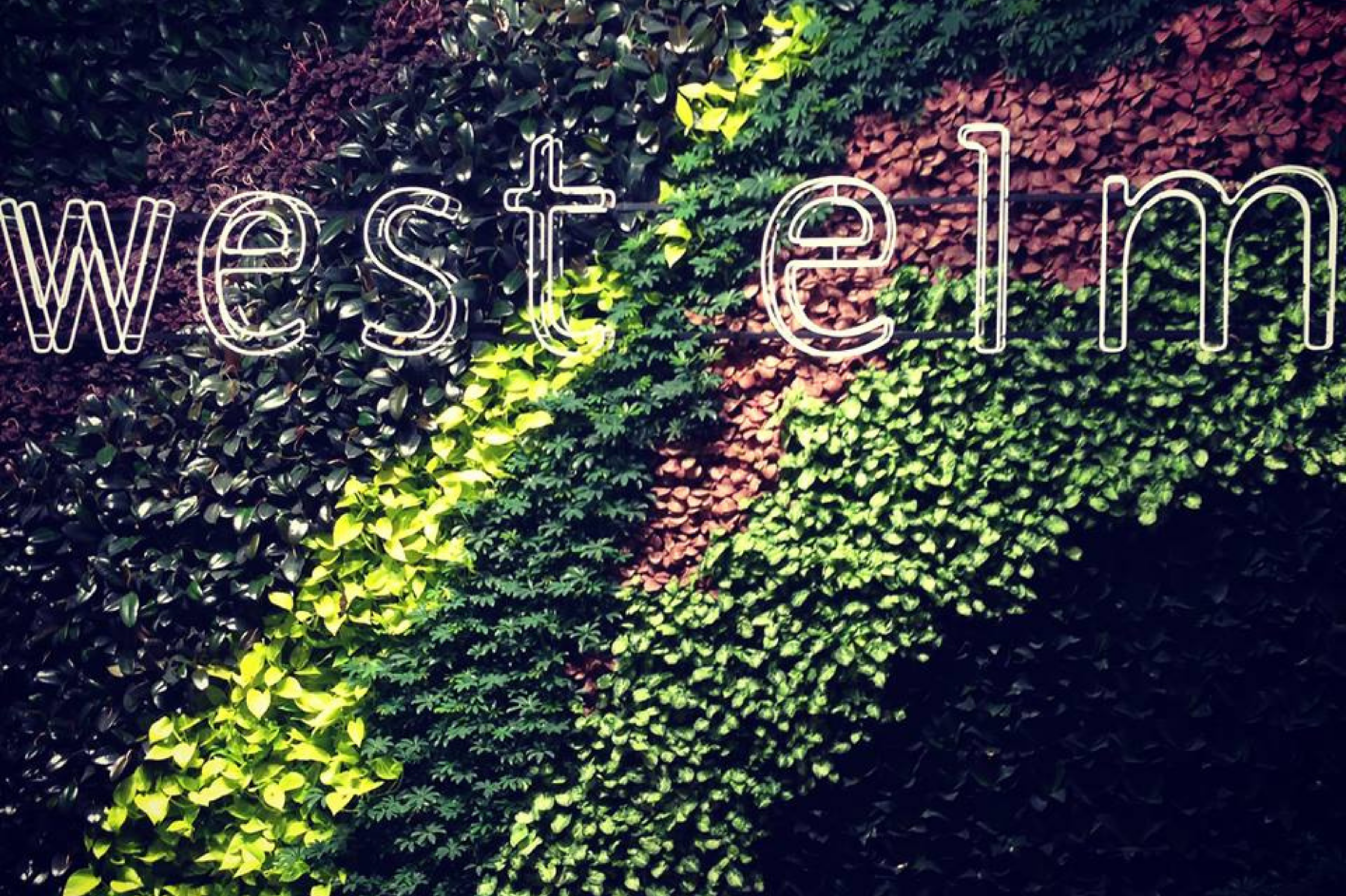 """A 538 sq ft """"living wall"""" around the main staircase of West Elm's UK flagship store in London.  Portview draped the wall in 3,226 fresh potted plants to help increase people's exposure to living plants and connect with nature."""
